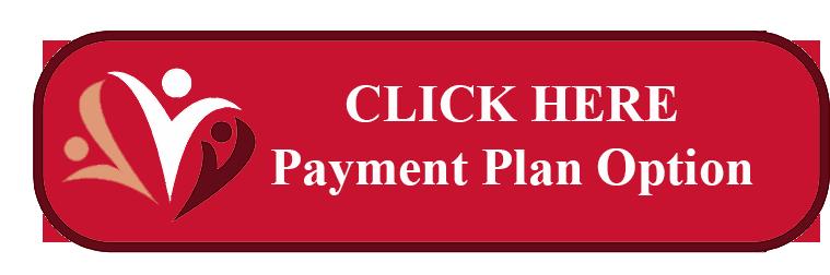 Payment Plan Button